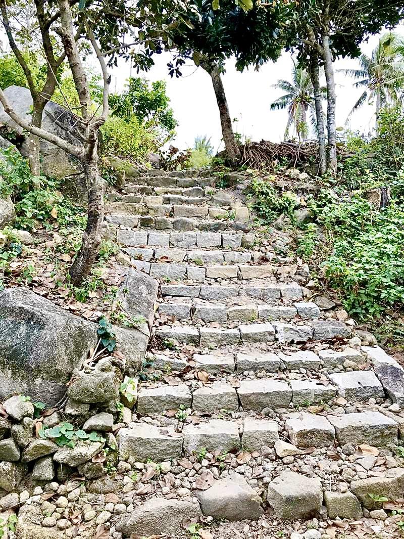 Đường đá dẫn ra biển Gò Cỏ.