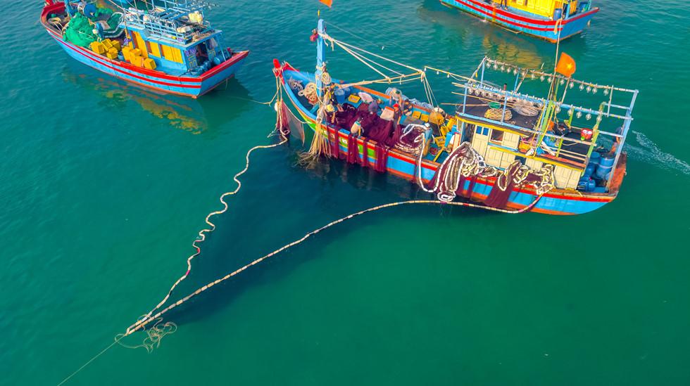 Nhộn nhịp sáng sớm khi tàu cá vào